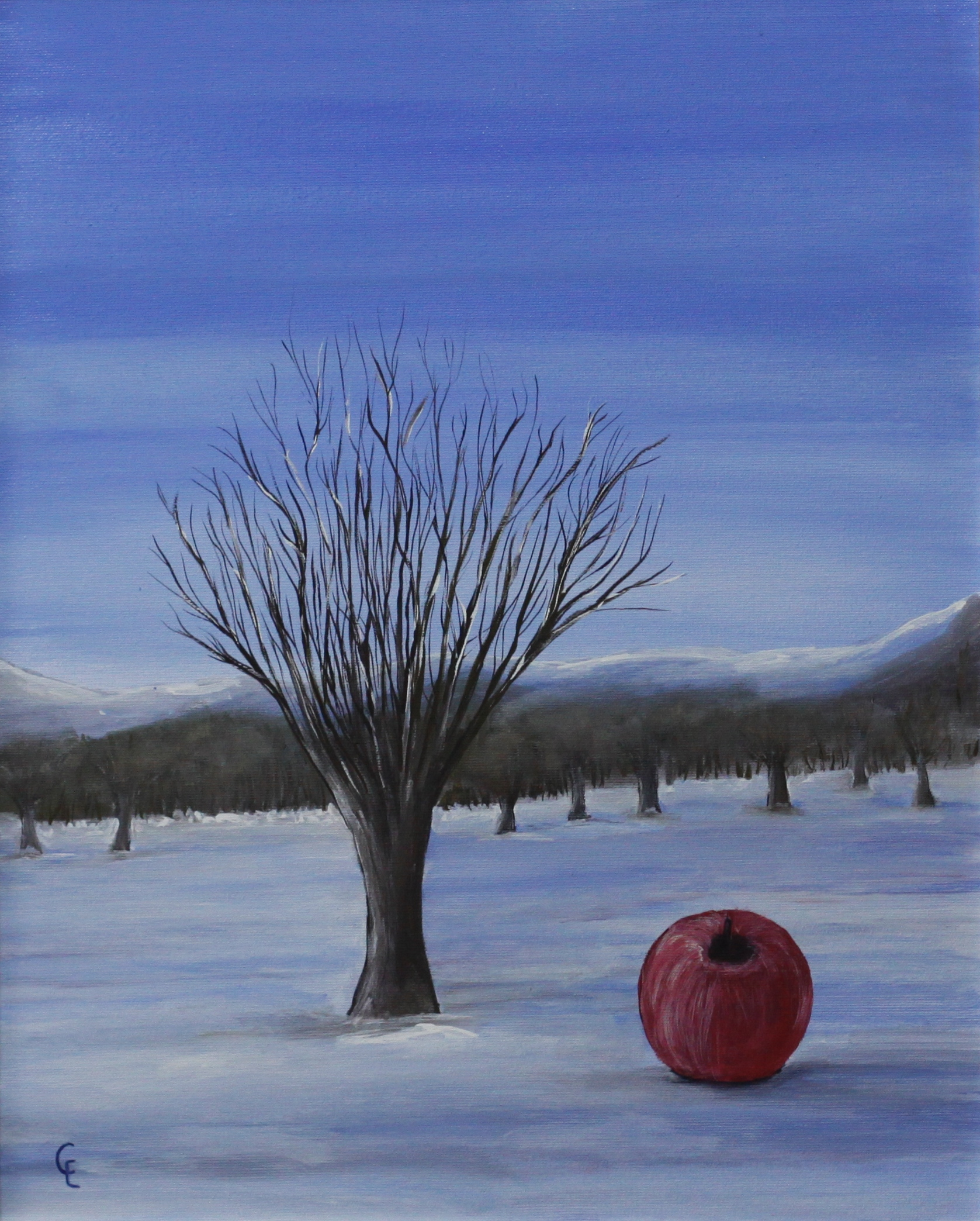 Winter landscape with apple